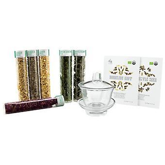 Tea It Yourself Tiy Detox Gift Kit (Mesa e Cozinha , Acessórios de cocina)