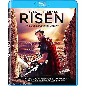 Risen [Blu-ray] USA import