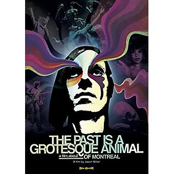 Past Is a Grotesque Animal [DVD] USA import