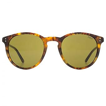 Polo Ralph Lauren Keyhole Round Sunglasses In Jerry Tortoise