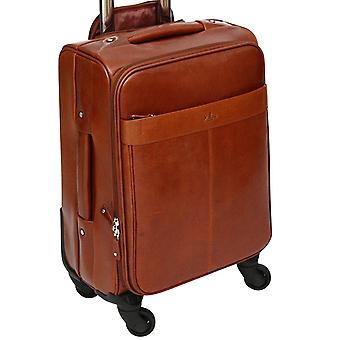 S Babila Leather Spinner Trolley Hand Luggage 14