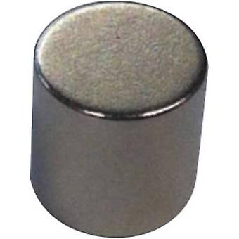 Permanent magnet Cylindrical NdFeB Temperature limit (max.): +8