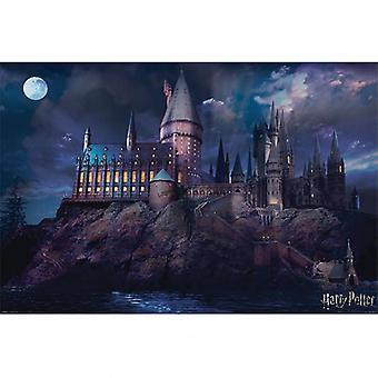 Cartel de Harry Potter Hogwarts 299