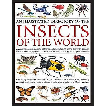 Illustrated Directory of Insects of the World - A Visual Reference Gui
