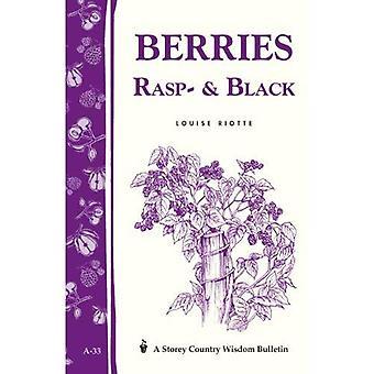 Berries: Raspberries and Blackberries