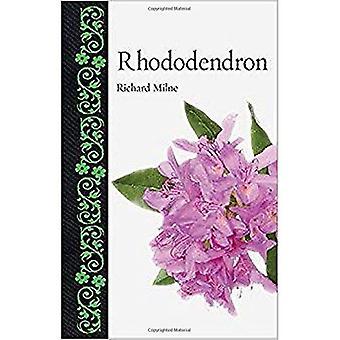 Rododendro (botanico)