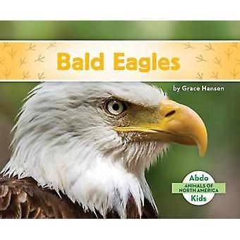 Bald Eagles by Grace Hansen - 9781680801088 Book