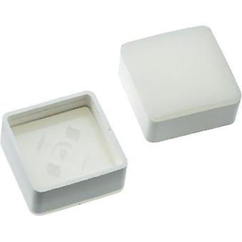 Switch cap White Mentor 2271.1004