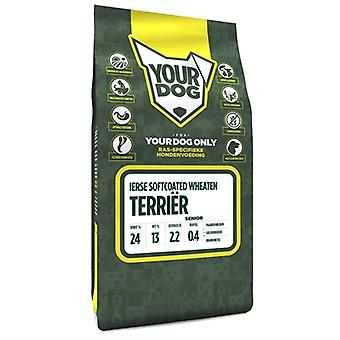 YOURDOG IERSE SOFTCOATED WHEATEN TERRIËR SENIOR 3 KG