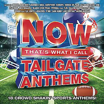 Various Artist - Now That's What I Call Tailgate Anthems [CD] USA import