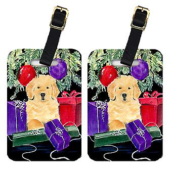 Carolines Treasures  SS8581BT Pair of 2 Golden Retriever Luggage Tags