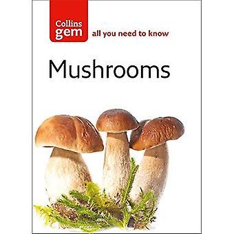 Cogumelos (Collins GEM)
