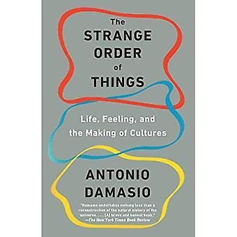 Die seltsame Ordnung der Dinge: Leben, fühlen und die Herstellung von Kulturen