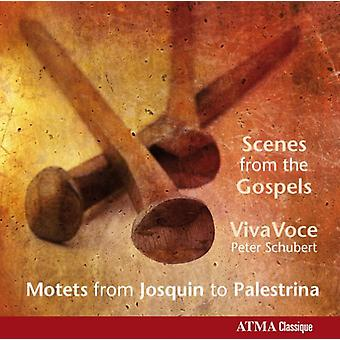 Gombert/Willaert/Manchicourt/Palestrina/Des Prez/M - Scenes From the Gospels: Motets From Josquin to Palestrina [CD] USA import