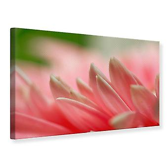 Canvas Print Close Up Of A Flower