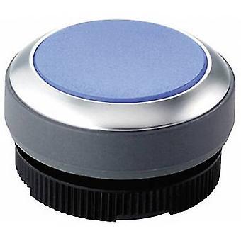 Pushbutton planar Blue RAFI RAFIX 22 FS+ 1.30.270.021/2600 1 pc(s)