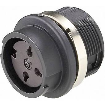 Amphenol T 3377 000 Bullet connector Socket, build-in Series (connectors): C091 Total number of pins: 5 1 pc(s)