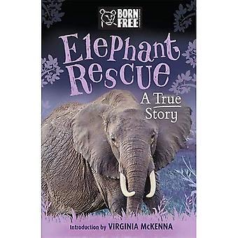 Éléphant libre né le sauvetage: Une histoire vraie