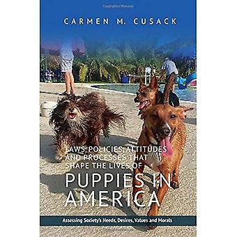 Laws, Policies, Attitudes & Processes That Shape the Lives of Puppies in America: Assessing Society's Needs, Desires...