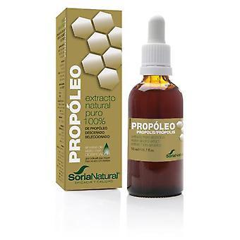 Soria Natural Hydroalcoholic Propolis Extract 50 ml (Herboristeria , Natural extracts)