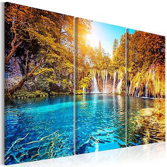 Canvas Print - Waterfalls of Sunny Forest
