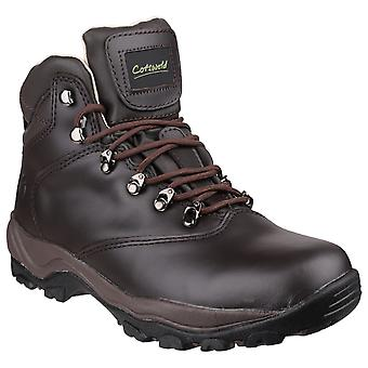 Cotswold Womens/Ladies Winstone Lace Up Boots