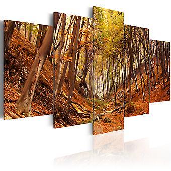 Leinwand Drucken - Orange Herbst