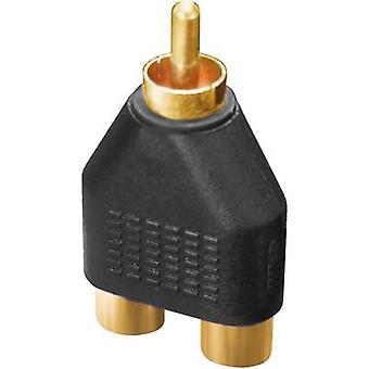 Audio/RCA adattatore [2 x presa RCA (phono) - 1 x RCA connettore (phono)] Black Dynavox
