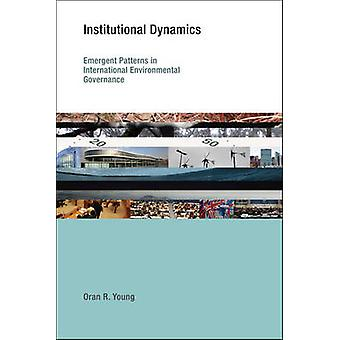 Institutionele dynamiek - emergente patronen in internationale bank