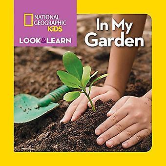 Nacional Geographic Kids mira y aprende: en mi jardín (Look & Learn) (Look & Learn) [libro]