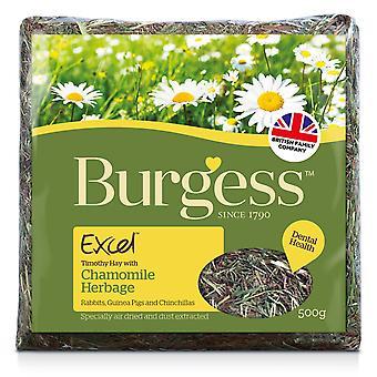 Burgess Excel Chamomile Herbage 500g