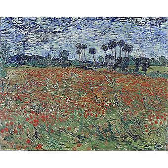Vincent Van Gogh - Fields with Poppies, 1890 Poster Print Giclee