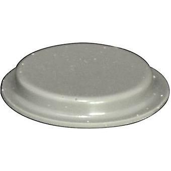 TOOLCRAFT PD2204G Foot self-adhesive, circular Grey (Ø x H) 19.7 mm x 3 mm 1 pc(s)