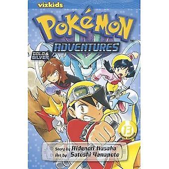 Pokemon Abenteuer 13