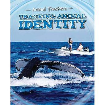 Sporing dyr identitet (dyr bane)