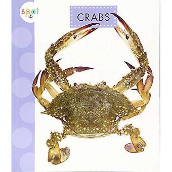 Crabs (Spot Ocean Animals)