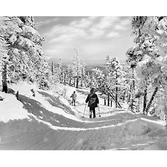 USA Vermont Killington Tourists cross-country skiing Poster Print