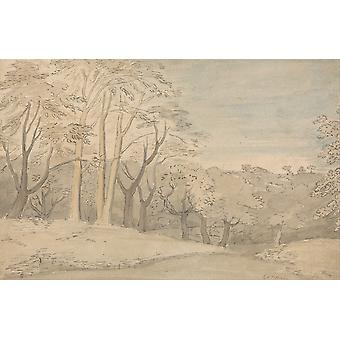 William Blake - A Woody Landscape Poster Print Giclee