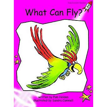 What Can Fly by Pam Holden