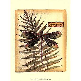 Royal Dragonflies IV Poster Print (10 x 13)