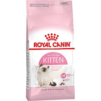 Royal Canin Kitten 36 Dry Food Mix