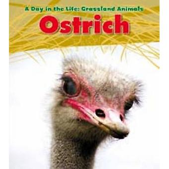 Ostrich by Louise Spilsbury - 9781406219043 Book