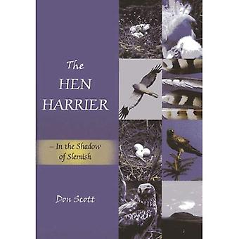 The Hen Harrier: In the Shadow of Slemish