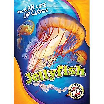 Méduse (vie océanique près)