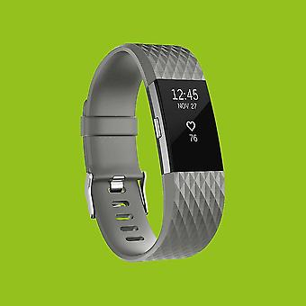 For Fitbit batch 2 plastic / silicone bracelet for men / size L grey watch