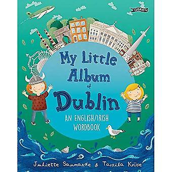 Mitt lilla album i Dublin: en engelsk/irländsk ord bok
