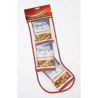 Lincoln Christmas Stocking For Horses