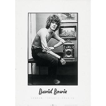 Pelo rizado David Bowie Poster Print (20 x 28)