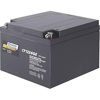 Conrad energy CE12V/24Ah 250226 VRLA 12 V 24 Ah AGM (W x H x D) 175 x 125 x 167 mm M5 connector Maintenance-free