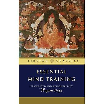 Viktigt sinne utbildning: Tibetanska visdom för det dagliga livet (arkivet av tibetanska Classics)
